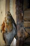 Jaanipaev Fish