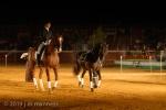 Horse Show 268 - Feria de Arcos - Spain
