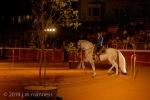 Horse Show 273 - Feria de Arcos - Spain