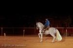 Horse Show 274 - Feria de Arcos - Spain