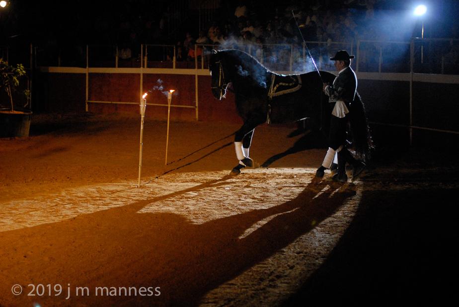 Horse Show 288 - Feria de Arcos - Spain