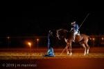Horse Show 390 - Feria de Arcos - Spain