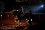 Horse Show 436 - Feria de Arcos - Spain