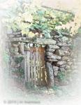 Garden Wall 058 - Spain