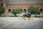 Plaza Sevilla 009Svla-0147 - Spain