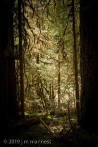 NVPG_Landscape-21262.jpg